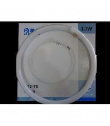 لامپ گرد 40 وات-T5 لامپ کمیاب و خاص