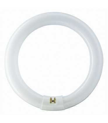 لامپ گرد 22W-T9 لامپ کمیاب و خاص