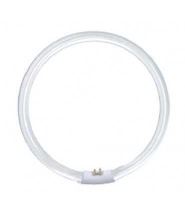 لامپ گرد 40W-T9 لامپ کمیاب و خاص